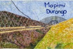 Mapimí, Durango — Lucy Virgen